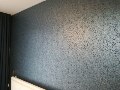 Realization of Interior  - wallpapering, painting, decoration (Czech Šternberk)