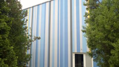 Decorative facade painting